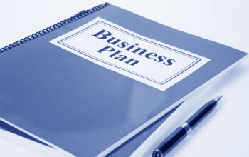 Do I want a Business Plan Writer or an Editor