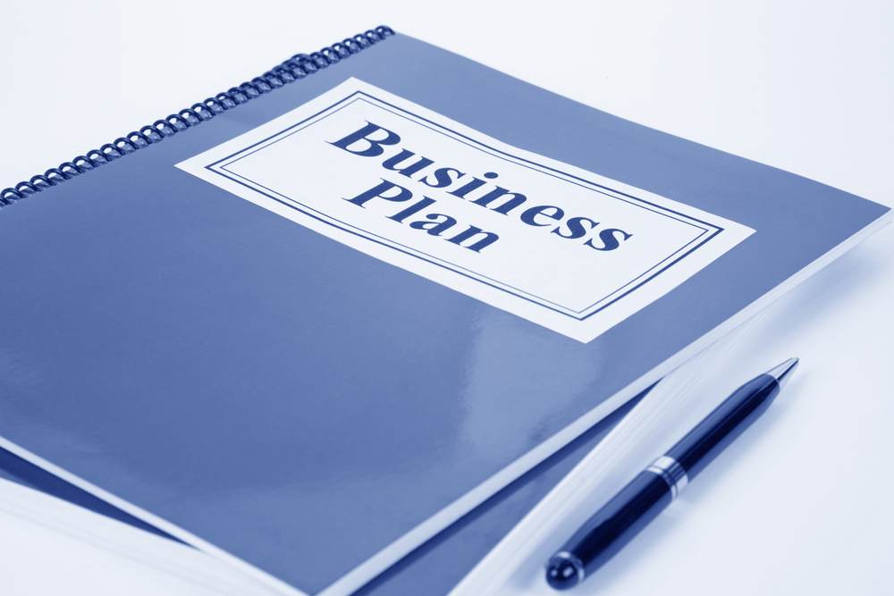 Do I want a Business Plan Writer or an Editor?