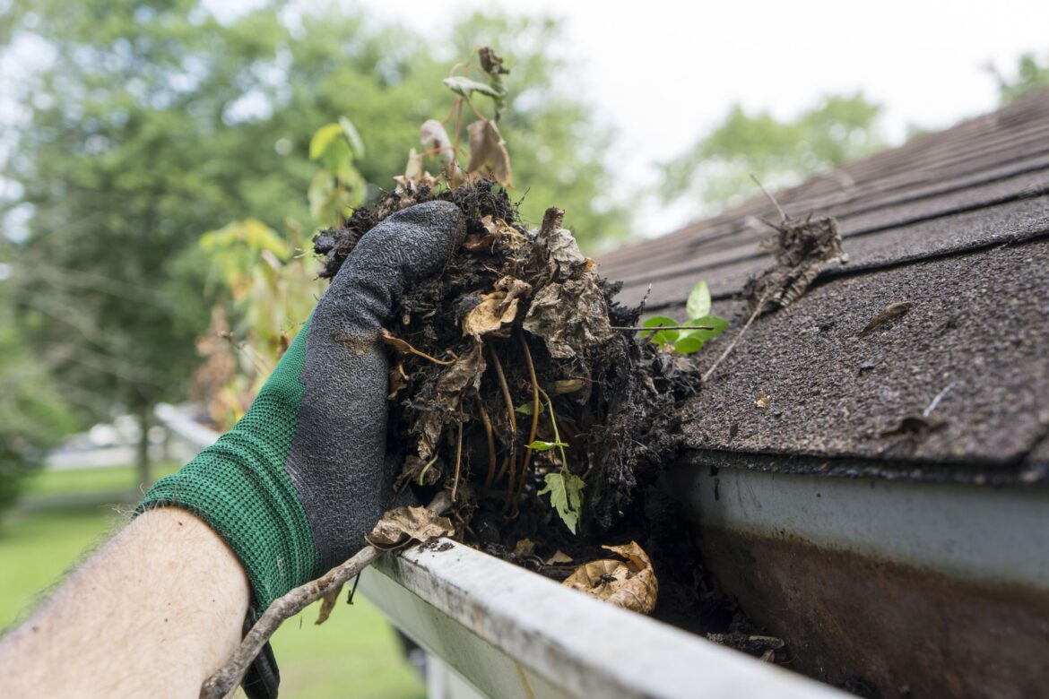The Best Gutter Cleaning Tips